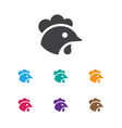 of zoo symbol on cock icon vector image vector image