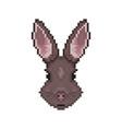 rabbit head in pixel art style vector image vector image