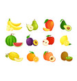 set cartoon fruits vector image