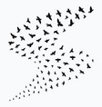 silhouette a flock birds black contours of vector image