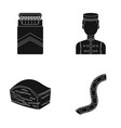a pack of cigarettes staff and other web icon in vector image vector image