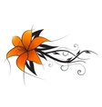 orange lily vector image