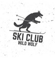 ski club concept with wolf vector image vector image