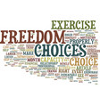 the big key to freedom text background word cloud vector image vector image