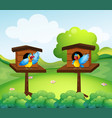 two parrots in birdhouse vector image vector image