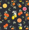 watercolor citrus pattern vector image vector image