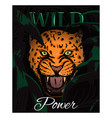 wild power slogan with amur leopard face vector image vector image
