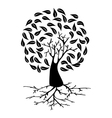 Young Tree with roots silhouette vector image vector image