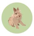 cute decorative rabbit flat style design vector image
