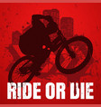 extreme sport t-shirt design with popular ride vector image vector image