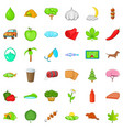 nature food icons set cartoon style vector image vector image