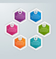 abstract hexagon business options infographics vector image vector image
