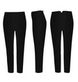 black pants vector image vector image