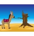 Burro in desert vector image vector image