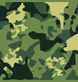 camouflage pattern back vector image vector image