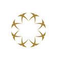 gold circle star logo template design vector image