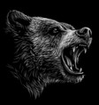 growling bear monochrome portrait a brown bear vector image