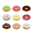 set colorful tasty donuts vector image