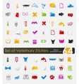 Set of veterinary stickers vector image