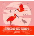 Trinidad and Tobago national symbols Scarlet red vector image vector image