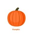 tasty and healthy vegetable pumpkin vector image