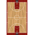 Basketball Court vector image vector image
