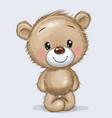 cartoon teddy bear isolated on a white background vector image vector image