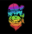 pug dog hat and bandana colorful vector image