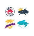 shark world king stethoscope shield logo design vector image vector image