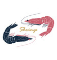shrimp hand drawn logo vector image vector image