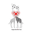 Two lovers giraffe vector image vector image
