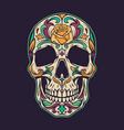 vintage mexican sugar skull colorful concept vector image vector image