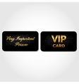 VIP Card Decorated with Leather vector image vector image