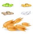 oat grains with other harvest in piles on white vector image