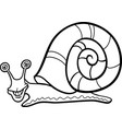 snail mollusk cartoon for coloring book vector image vector image