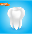 white healthy and clean human tooth 3d style vect vector image