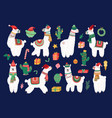 christmas alpaca funny winter llama holiday cute vector image vector image