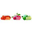 decorative label set for vegetable juice or drink vector image vector image