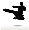 karate silhouette vector image vector image