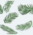 palm leaf seamless pattern background beach vector image