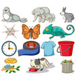 set different animals and other home items on vector image