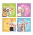 set of cute grandparents couple vector image