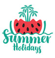 travel summer banner with watermelon and palms vector image vector image