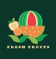 fresh fruits vector image
