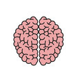 brain organ human intelligence concept vector image vector image