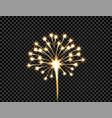 festive golden firework salute burst flash on vector image vector image