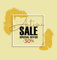 ginkgo biloba leaves sale banner yellow poster vector image
