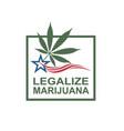 marijuana leaf on flag vector image vector image