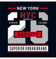 new york city typography graphic artfor t shirt vector image