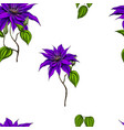 seamless pattern with clematis leaves and stems vector image